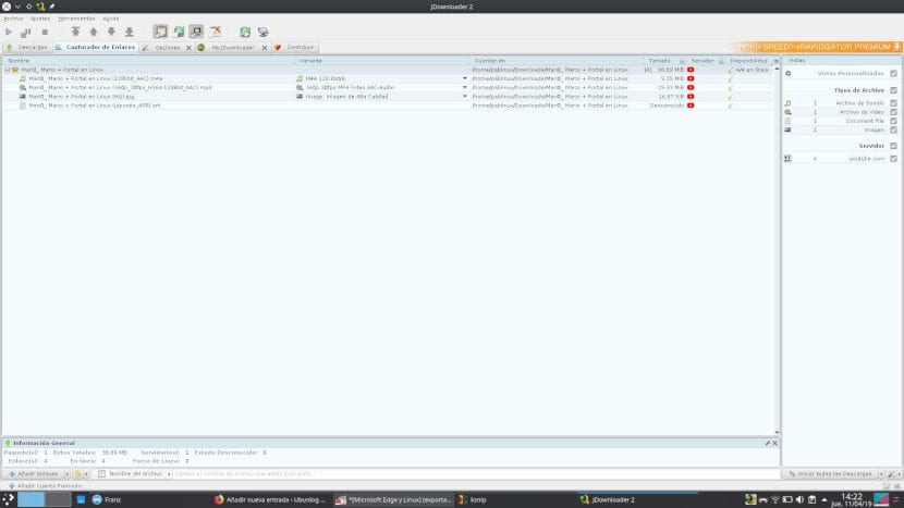 Descargar vídeo con Jdownloader