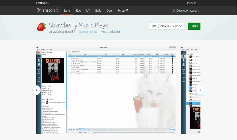tienda snap para instalar strawberry music player
