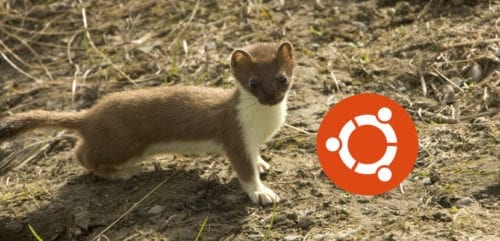 Concurso de fondos de pantalla de Ubuntu 19.04