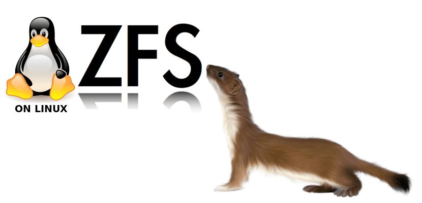 ZFS en Eoan Ermine