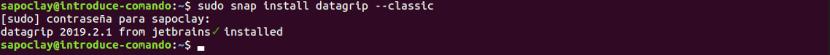 instalación datagrip snap