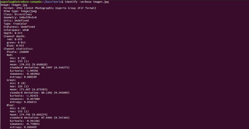 listado metadatos identify
