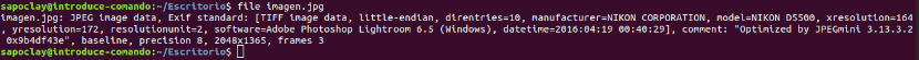 comando file para obtener metadatos de una imagen