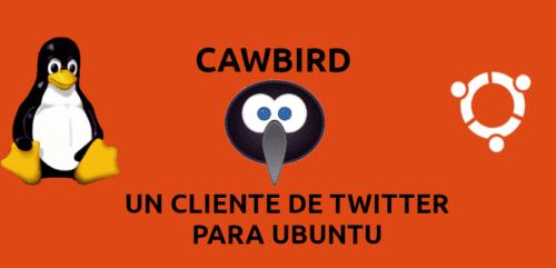 about cawbird