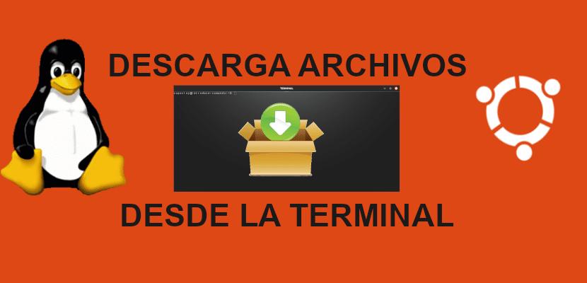 descargar archivos desde la terminal