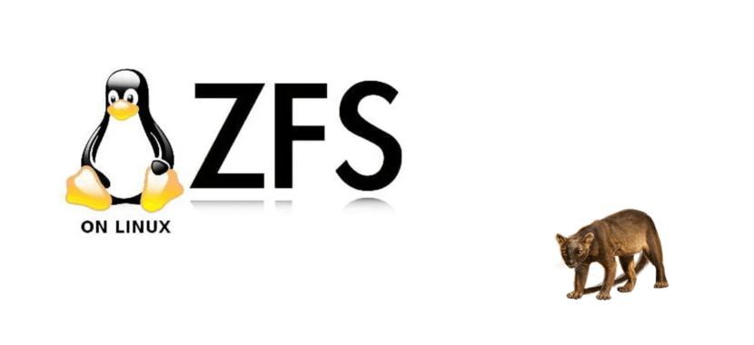 ZFS en Focal Fossa