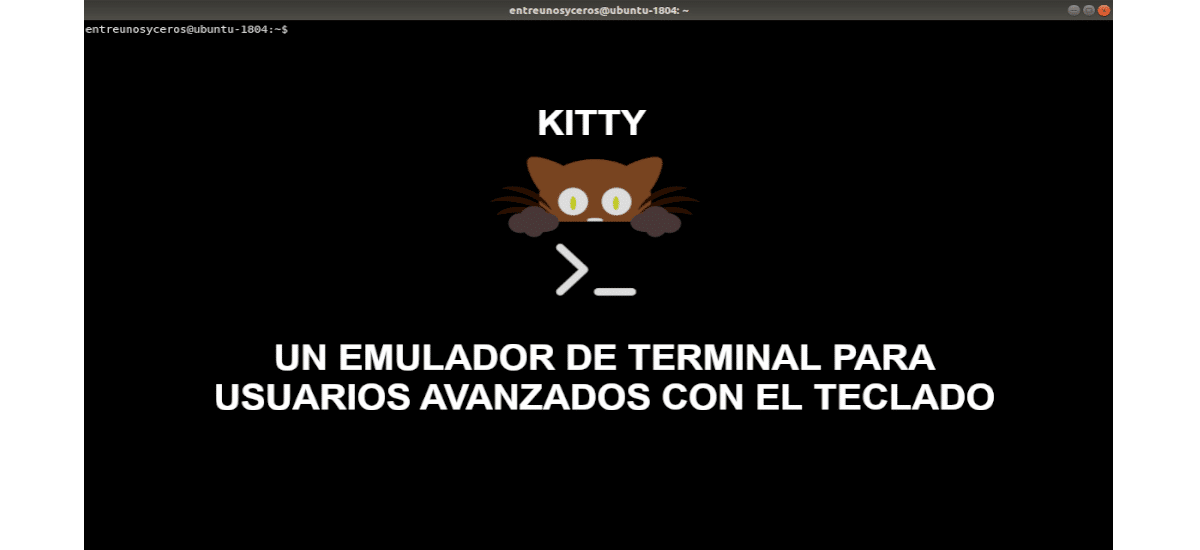 about emulador kitty