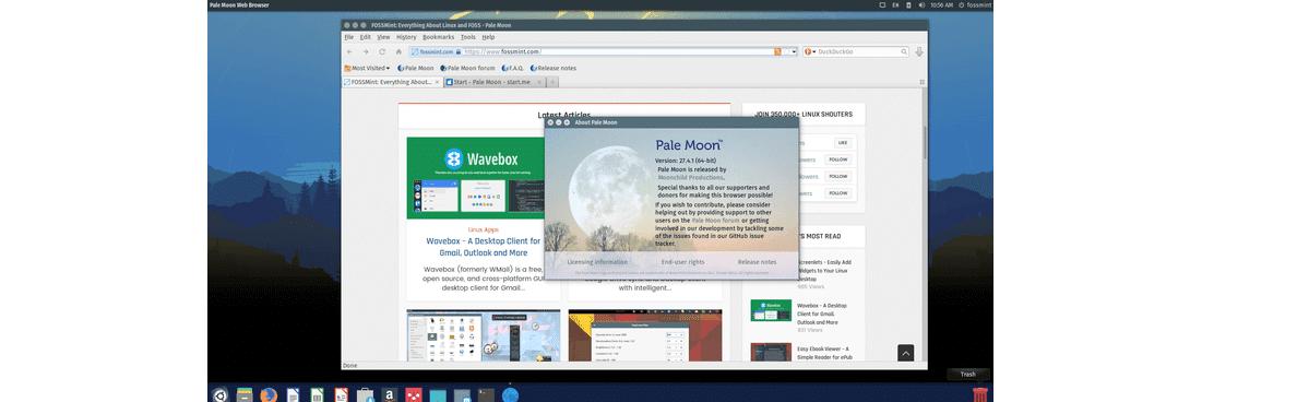 PaleMoon-Web-Browser