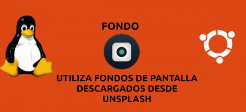 About fondo
