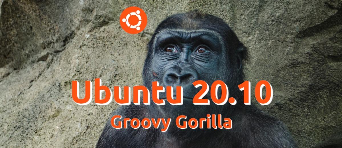 Groovy Gorilla