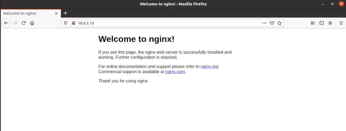 servidor nginx funcionando en el navegador web