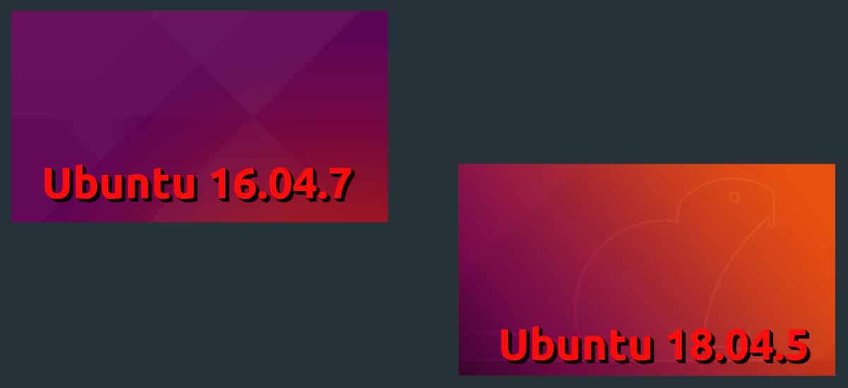 Ubuntu 18.04.5 y 16.04.7