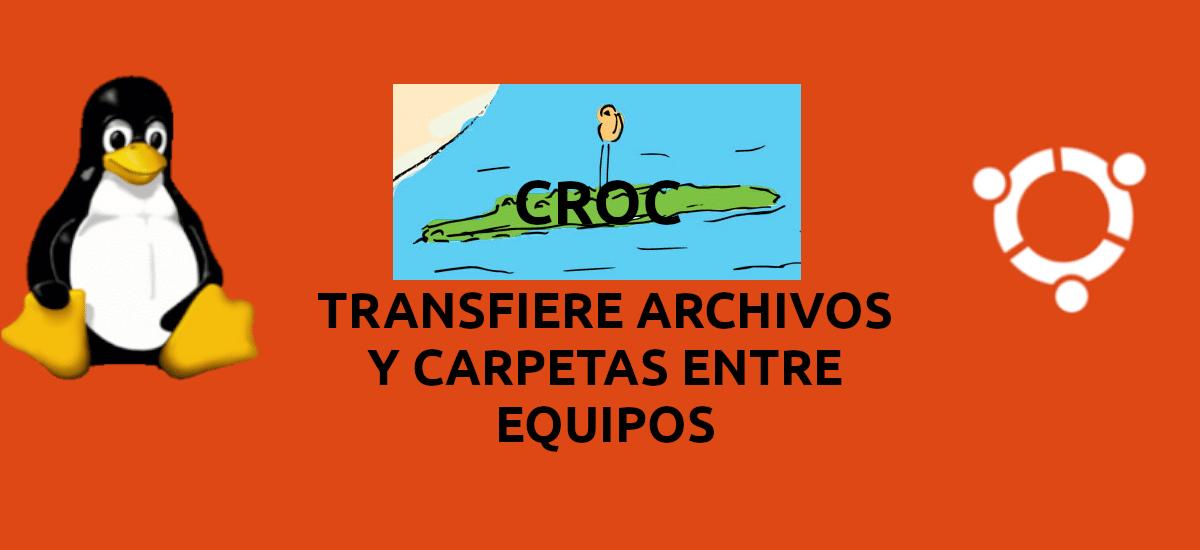 About Croc