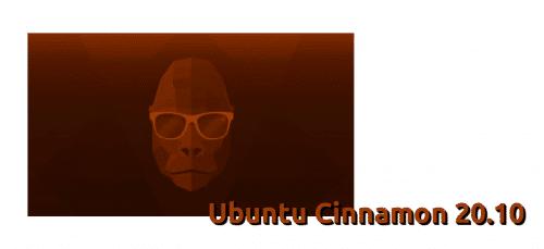 Ubuntu Cinnamon 20.10