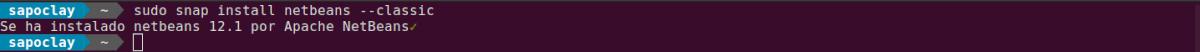 instalar netbeans 12.1 como snap