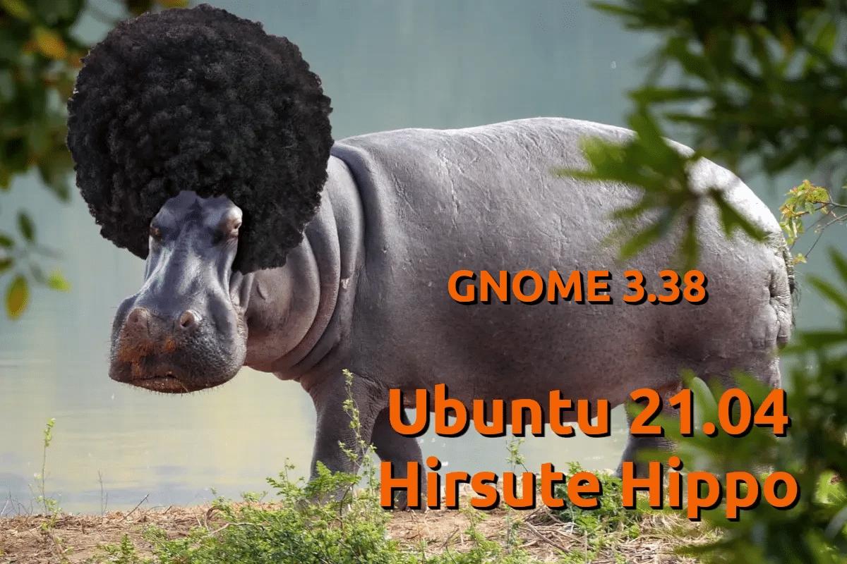 Ubuntu 21.04 con GNOME 3.38